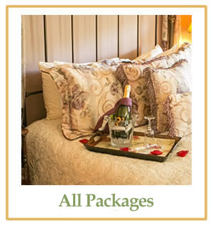 new jersey bed and breakfast inn at laurita winery spa and packages